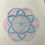 waldorf sixth grade geometry