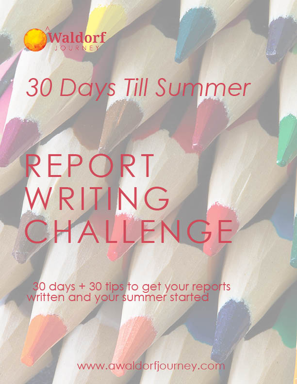 Get your book report written